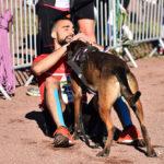 canicross hyères running days