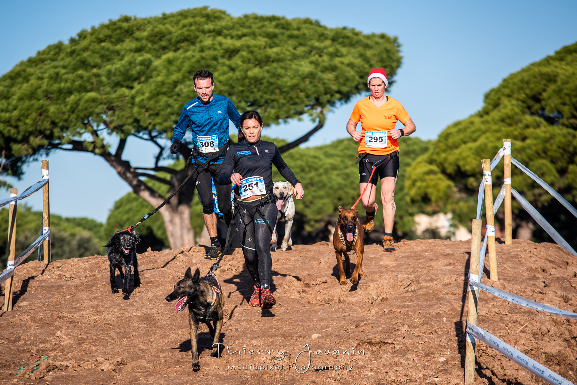 Calendrier Canicross.Canicross Des Hyeres Running Days 15 Decembre 2019 A