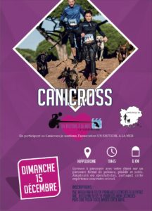 Affiche Canicross Hyères Running Days 2019 - Communication digitale Ingenieweb